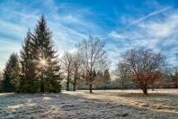 Eichelgarten im Forstenrieder Park