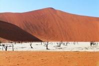Farbkontraste Namibia/ Death Vlei)